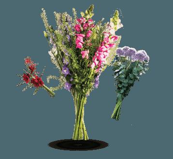Květiny z květinářství Papavera